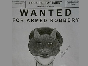 Retrato-falado da criminosa que assaltou loja de sapatos