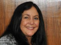 Rose de Freitas, deputada (Foto: Laycer Tomas/Agência Câmara)