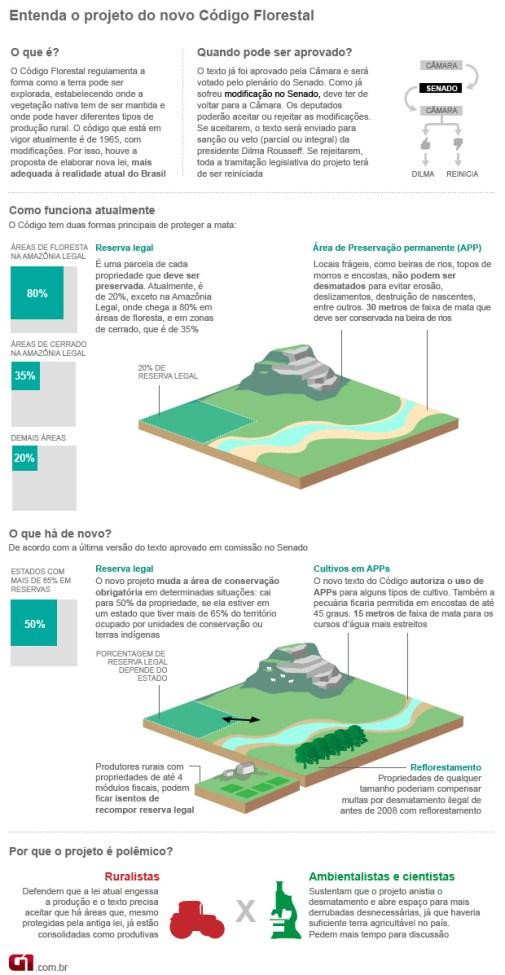 Info Código Florestal 24.11 (Foto: Editoria de Arte/G1)