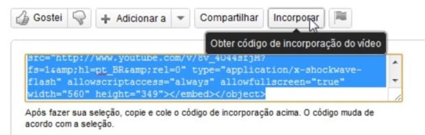 Encontre o vídeo e copie o código de incorporação (Foto: Reprodução/Camila Porto)