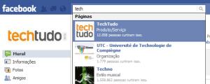 Curtir páginas de empresas, artistas ou sites (Foto: Reprodução/Camila Porto de Camargo)