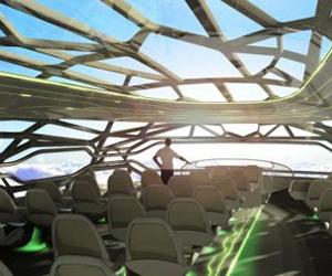 Avião transparente oferecerá visões deslumbrantes (Foto: Reprodução)