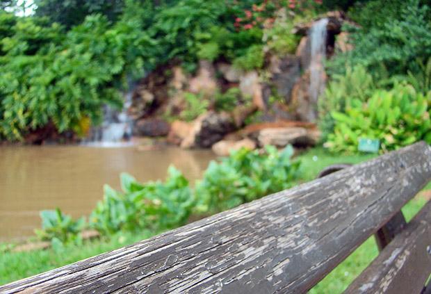 Imagem de banco de madeira com lago e vegetação ao fundo (Foto: Adriano Hamaguchi)