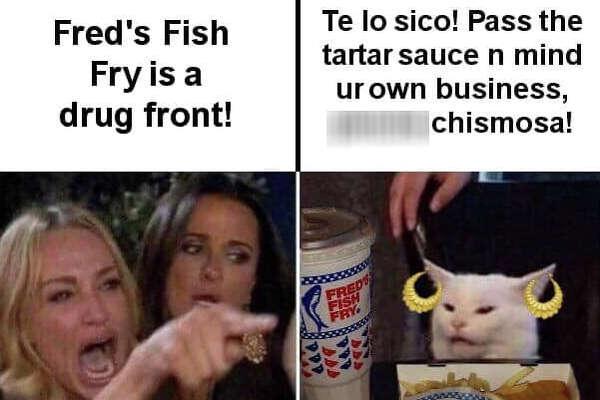 Lady Yelling At Cat Memes Woman Yelling At A Cat 2020 03 07