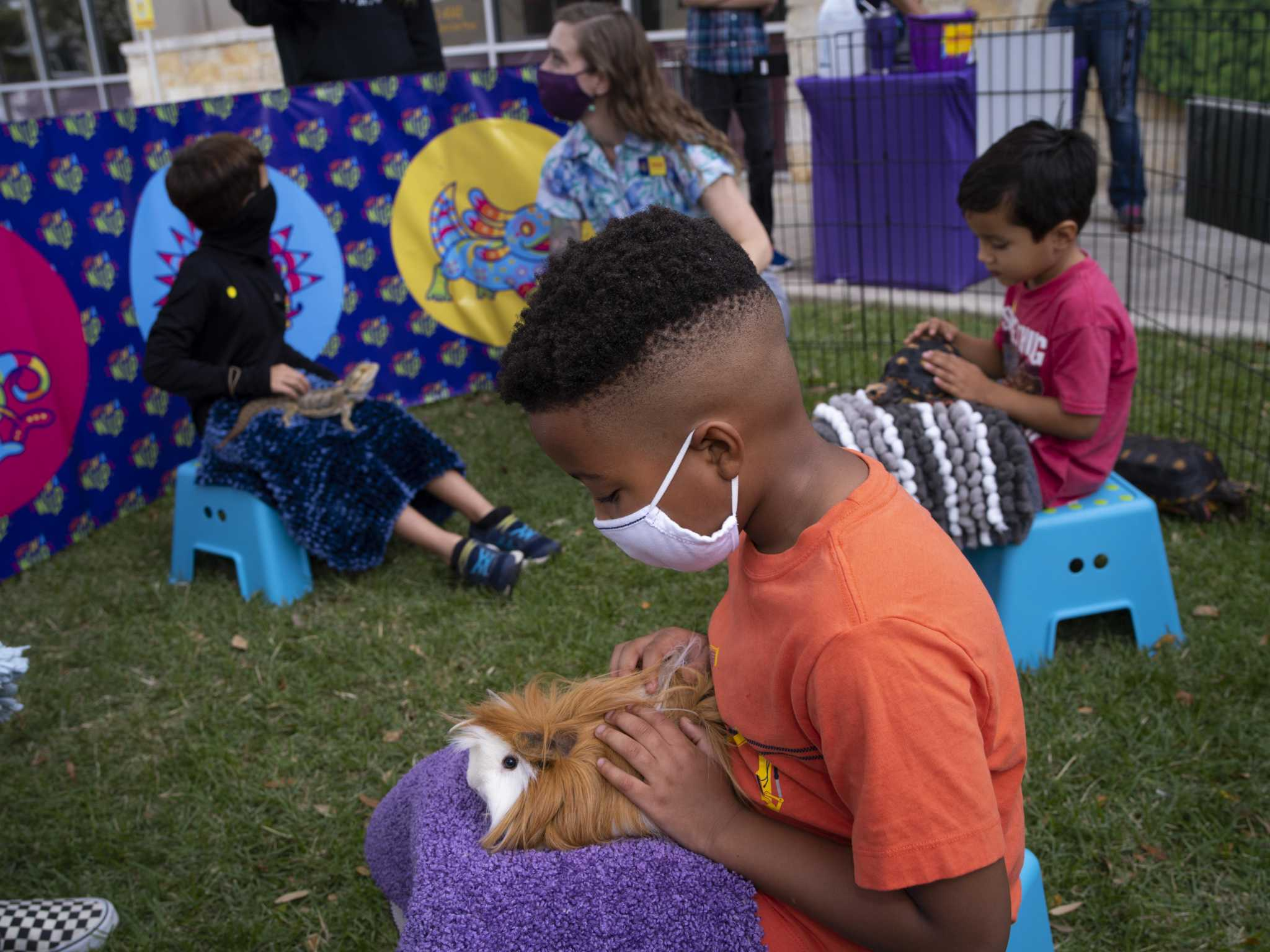 Need Ideas For Coronavirus Kids Parties These San Antonio Mobile Petting Zoos Bring The Animals To You