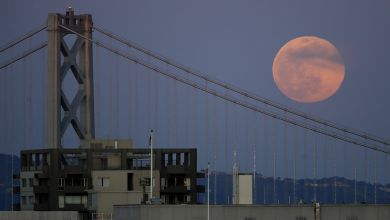 Catch April's Super Pink Moon in the Bay Area on Monday night