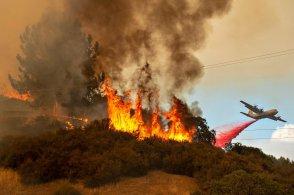 Understanding Wildfires