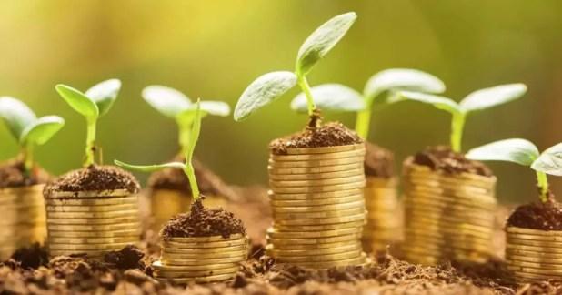 My Green Lifestyle! Investasi Lingkungan Hidup yang ...