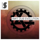 Amit: Dub Evolution