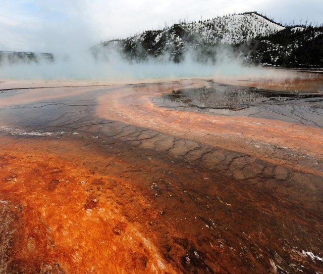 Yellowstone Volcano Was Hit By Earthquake Swarm Of  Tremors And Scientists Now Know Why