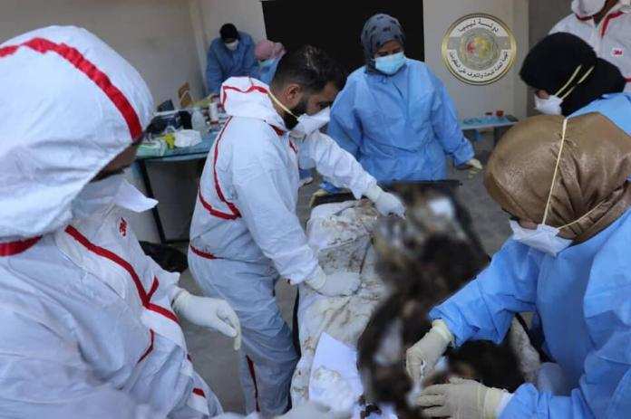 DNA analysis carried out on a corpse exhumed in Tarhouna, on March 15, at the University Hospital of Tripoli.