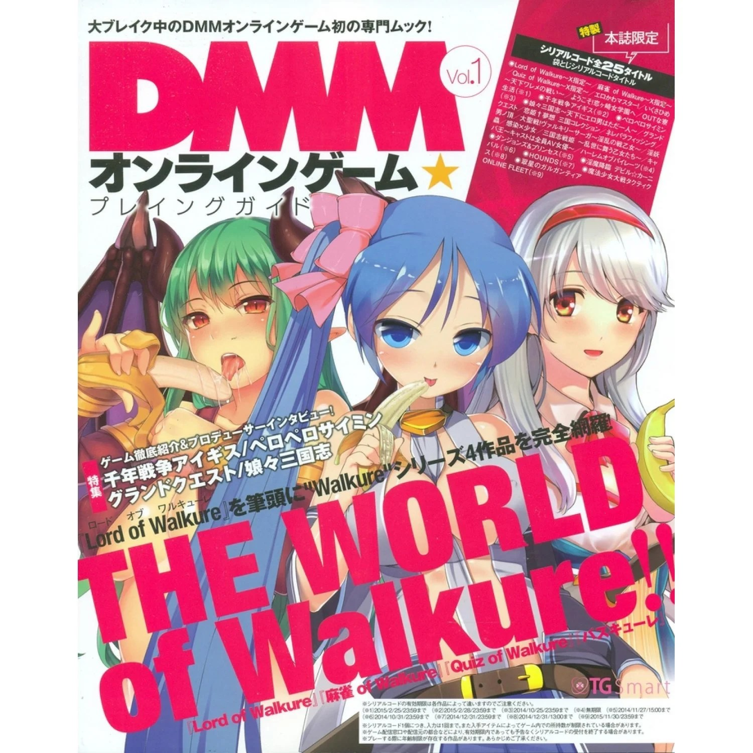 DMM Online Game Playing Guide Vol1