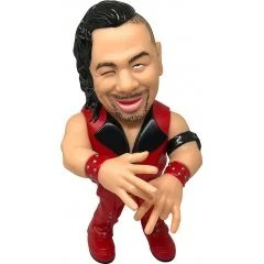 16D COLLECTION 004: WWE SHINSUKE NAKAMURA 16 directions