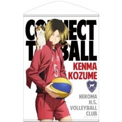 HAIKYU!! B2 WALL SCROLL: KENMA KOZUME Cospa