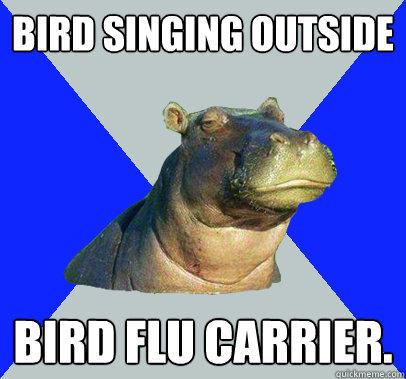 bird singing outside bird flu carrier.