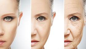 Image result for increasing human lifespan