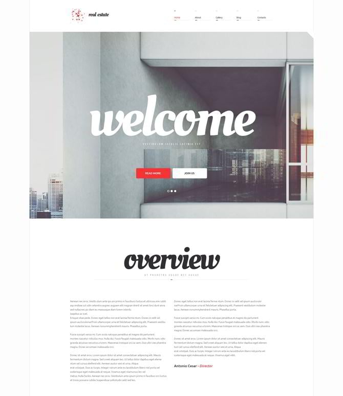 60 Real Estate WordPress Themes & Plugins for Realtor