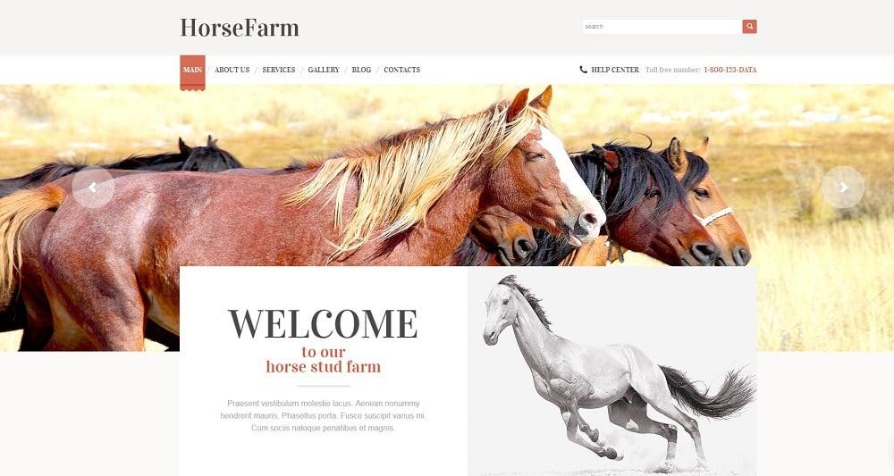 Promotion of Horse Farms WordPress Theme