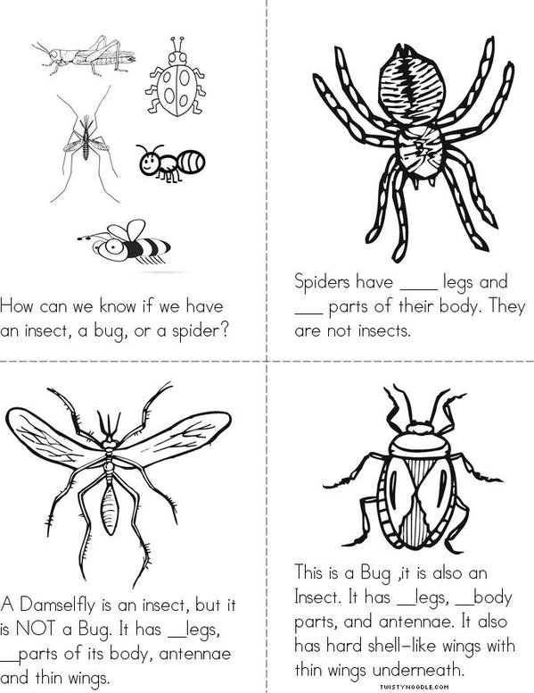 Insects Bugs And Spiders Book Twisty Noodle