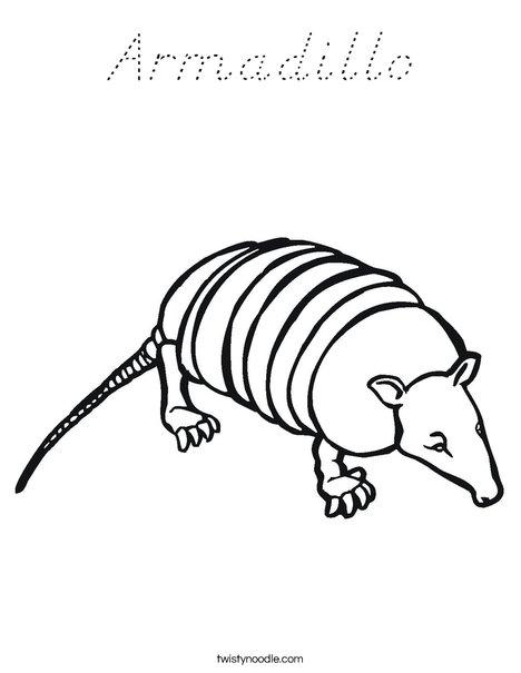 armadillo coloring page # 46
