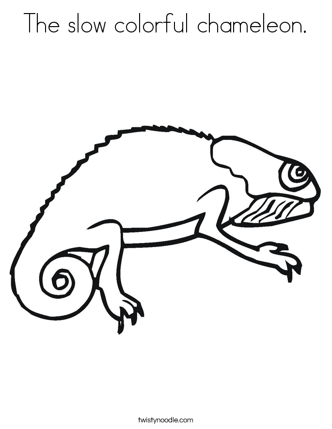 the slow colorful chameleon coloring page twisty noodle