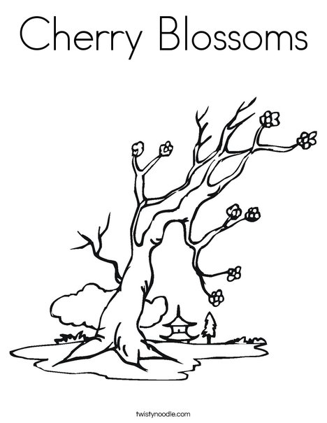 cherry blossoms coloring page twisty noodle