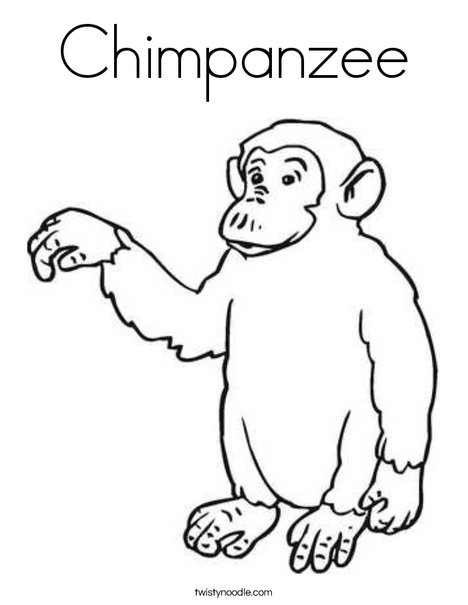 chimpanzee coloring pages chimpanzee coloring page