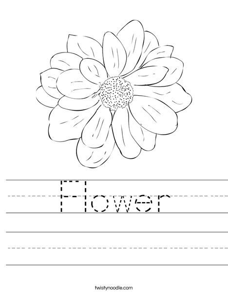 Flower Worksheet Twisty Noodle