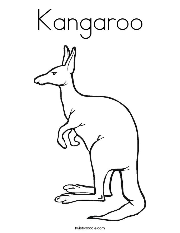 kangaroo twisty noodle