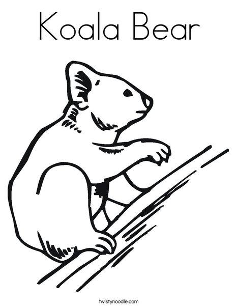 koala bear coloring page twisty noodle