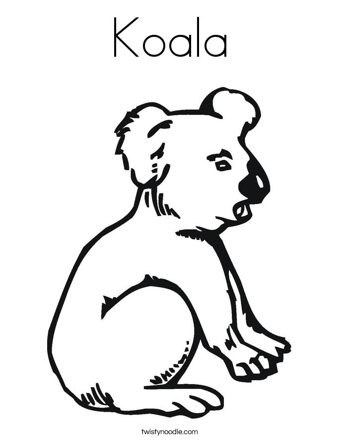 koala bear coloring pages twisty noodle