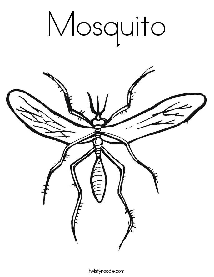 fly coloring page twisty noodle