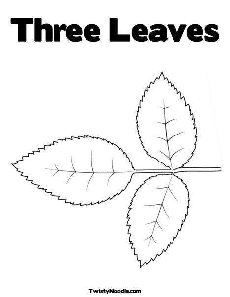rose leaf colouring pages
