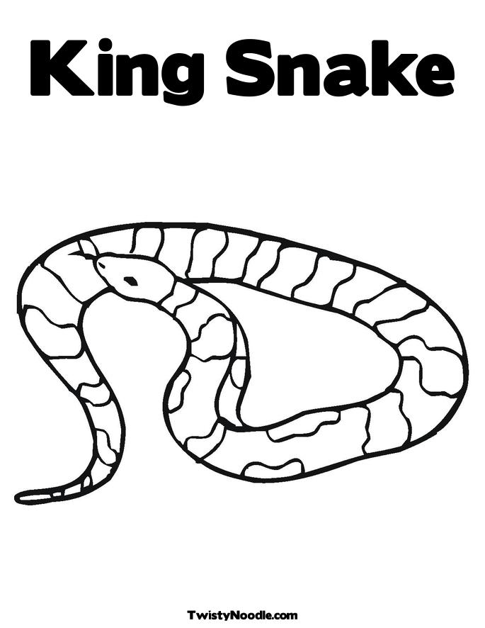 king snake coloring pages cooloring com