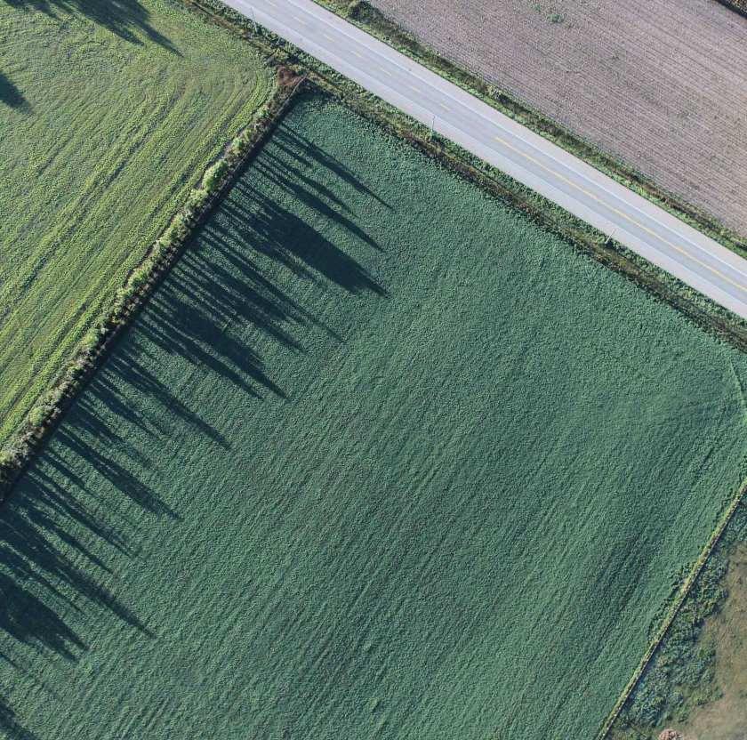 An aerial view of a field. A road runs through the upper right corner.