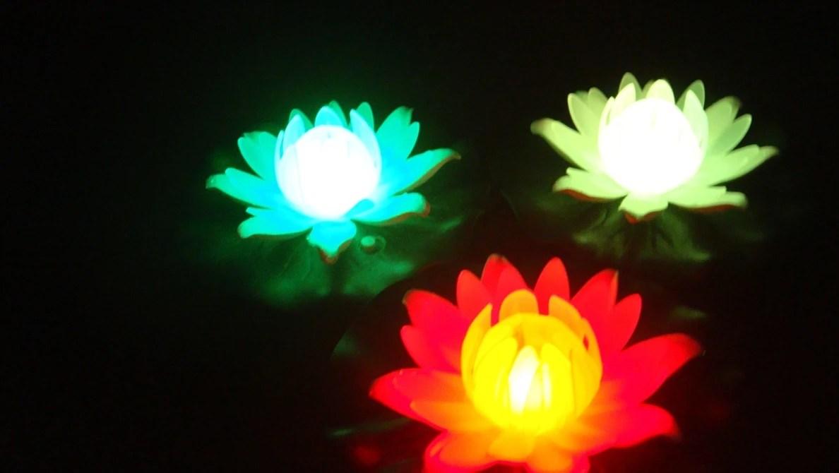 Led蓮花燈 BI_lotus002W / 臺北市信義區-藍墨水 / 臺灣黃頁詢價平臺