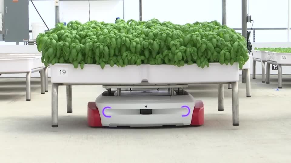 Produce-growing robots drawing major green investors