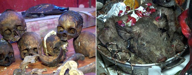 Tétrico: encuentran 15 cráneos en Florencio Varela/ DyN