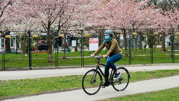 PHOTO: A person rides her bicycle past fenced off cherry blossoms at a park during the COVID-19 pandemic in Toronto, May 1, 2020. (Nathan Denette/The Canadian Press via AP)