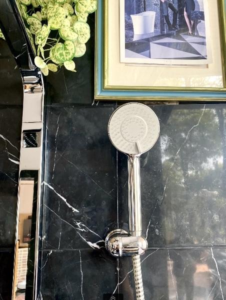 【麗室衛浴】德國 HANSA BASICJET 三段式蓮蓬頭 4463.0300