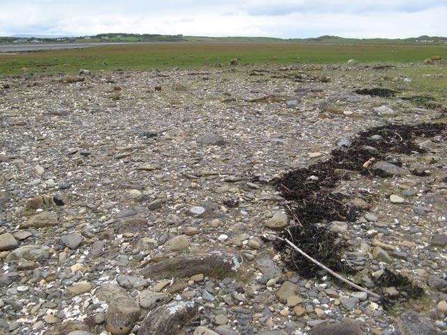 Image result for high tide mark