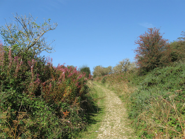 Bridleway, Castle Hill National Nature Reserve by Simon Carey