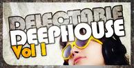 Dgs delectable deephouse 01 512