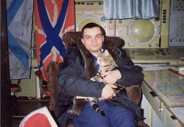 8224028 Коты на службе Отечества