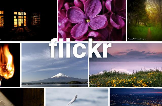 flickr-.jpg -