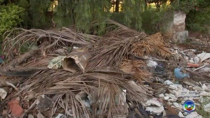 Antigo galpão da estação ferroviária em Araçatuba acumula lixo e entulho