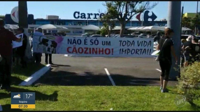 Ativistas protestam contra morte de cão em hipermercado de Campinas
