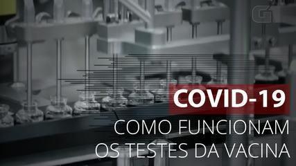 Entenda como os testes da vacina Covid funcionam