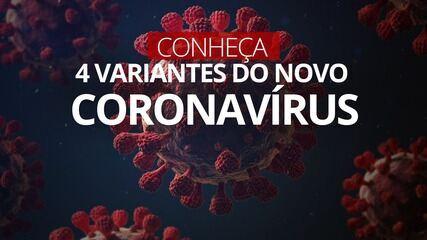 VÍDEO: Conheça 4 variantes do novo coronavírus