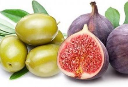 %D9%89%D9%89-13_1614612081 تعرف على أسماء نباتات ذكرت في القرآن المزيد
